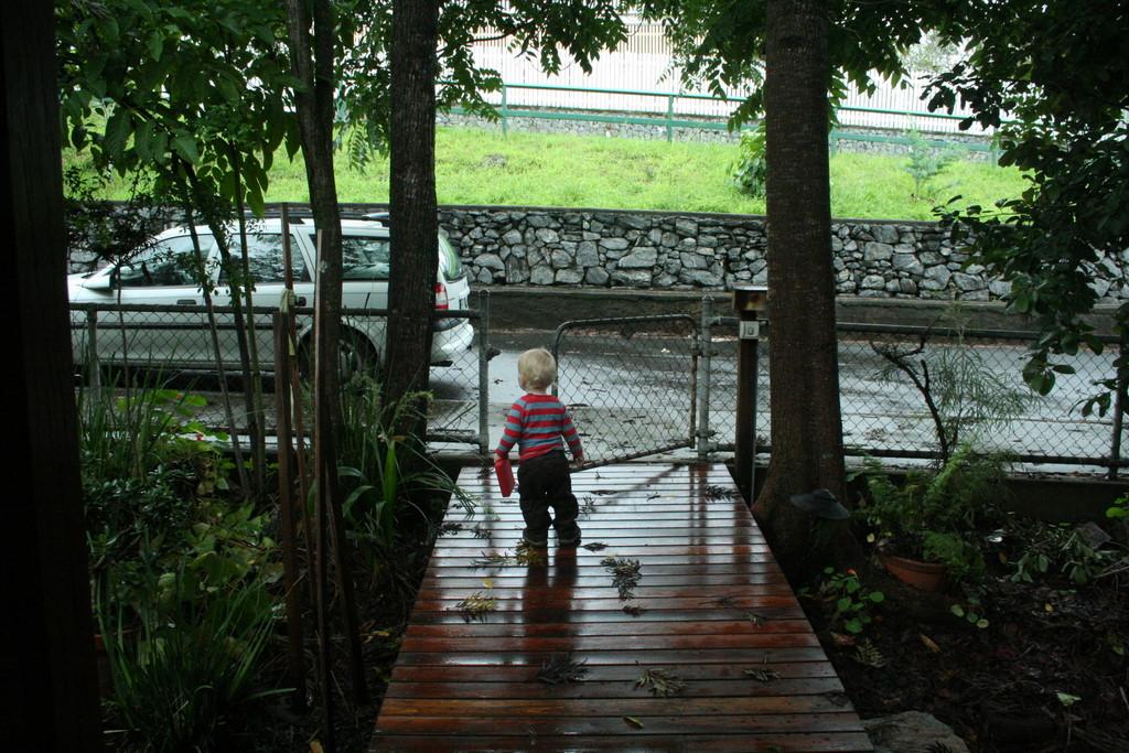 in the wet front garden
