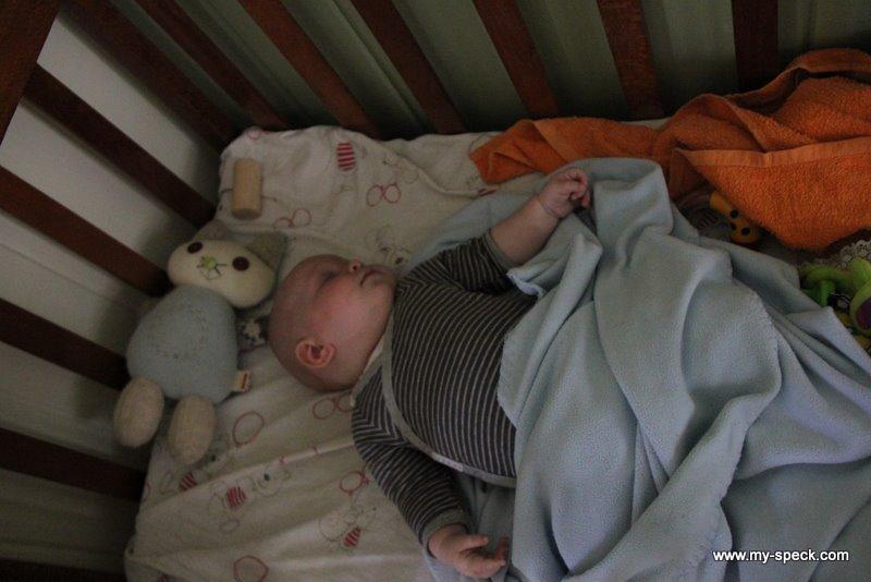 sleepy-head Luna, 13 weeks old