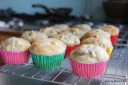 cupcakes! AKA apple cinnamon poppyseed muffins