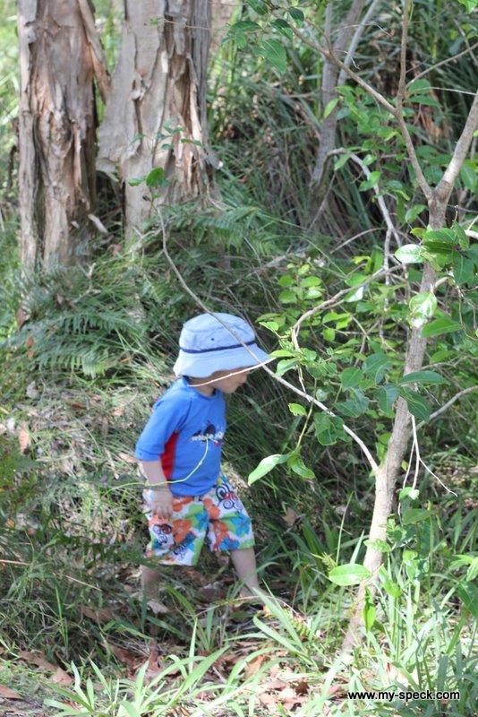 Bush play - camping at Boreen Point